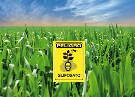 Peligro Glifosfato
